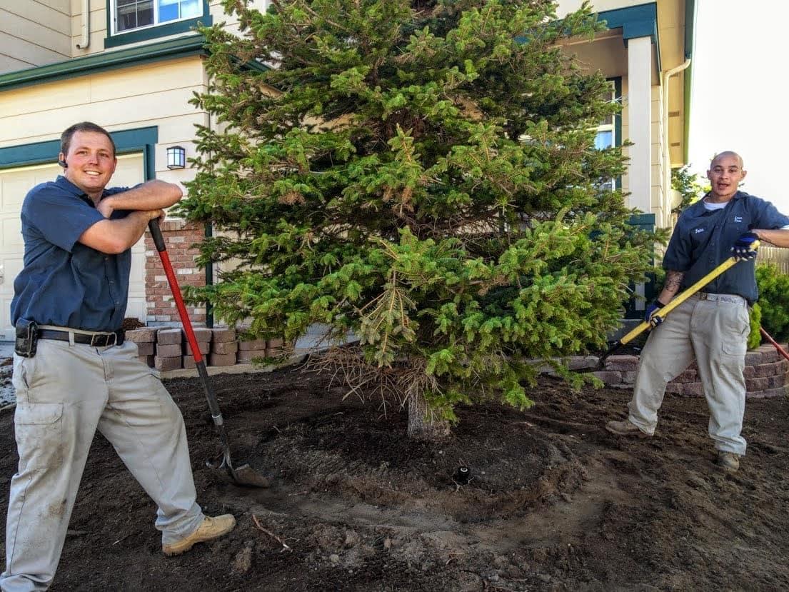 Landscaping-Sprinkler-Repair-Lawncare-Aeration-lawnpros-landscape-720.221.3606-719.963.6267-49