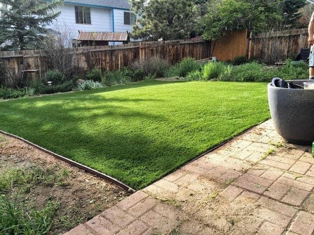 Grass Maintenance Aurora, CO