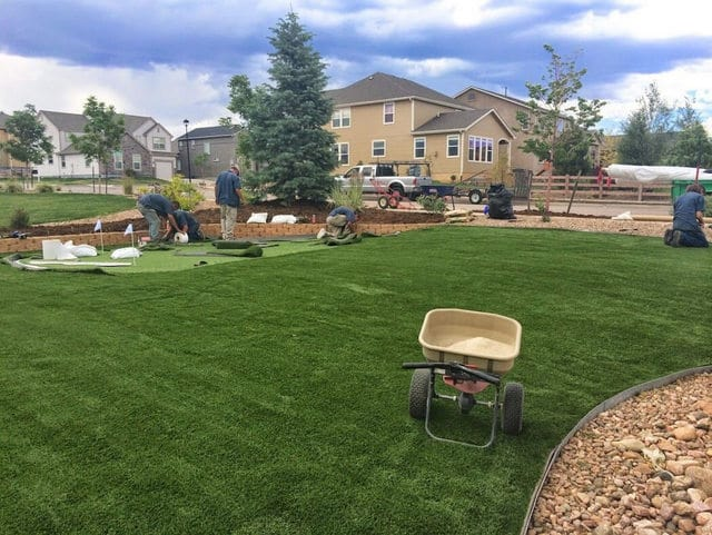 Lawn Grass Maintenance Denver