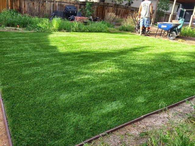 Grass Installation Franktown