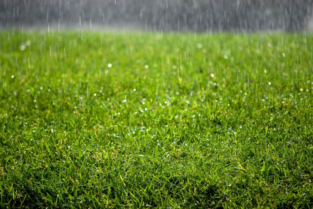 DRAINAGE FOR ARTIFICIAL TURF