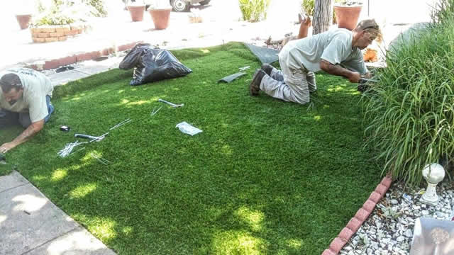 Lawn Pros Staff Doing Grass Installation